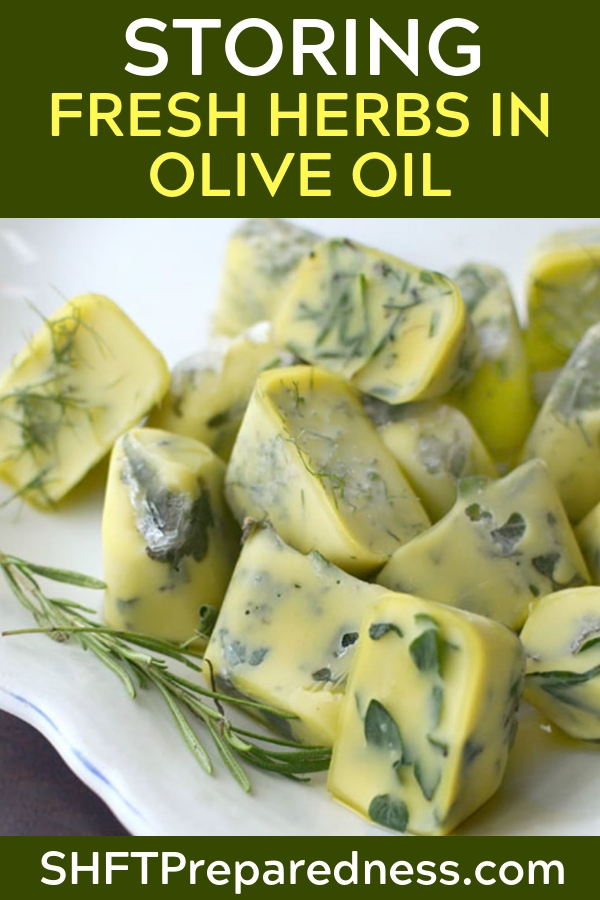 How to Preserve Fresh Herbs in Olive Oil - Hopefully you have a nice plot set aside for growing herbs. Herbs used to be only for culinary use in my kitchen.
