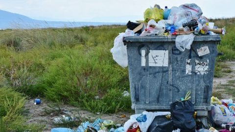 Cut Down On Trash, Be More Sustainable