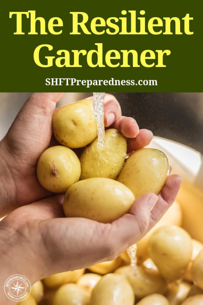 The Resilient Gardener – Grow Potatoes, Corn, Beans, Squash, and Eggs - This is a great strategy. I cannot be angry at anyone who is growing their own food in any facet. This book elaborates on the reasons for these crops and how you can be most effective growing and storing them. Of course there is a section about eggs as well.