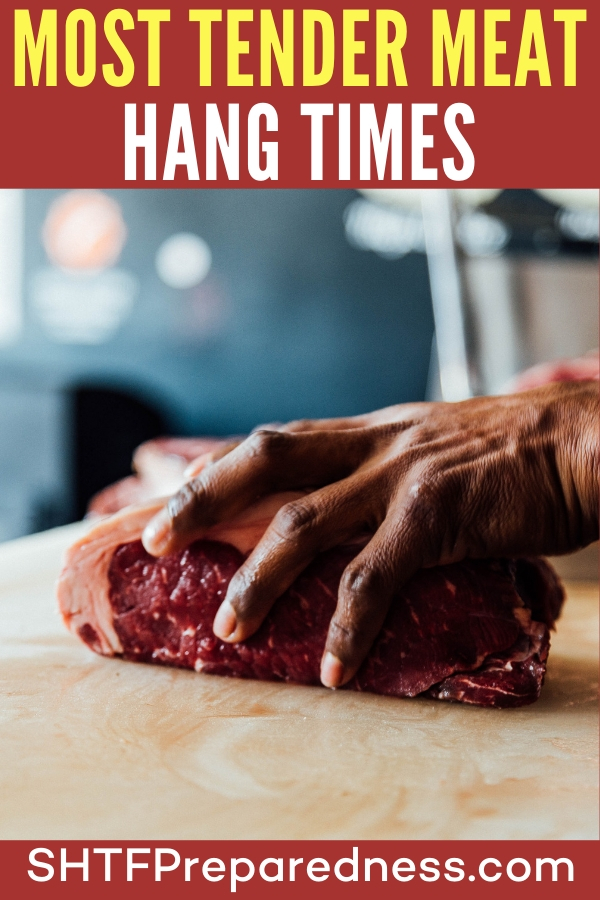 Most Tender Meat Hang Times - If you are new to managing game meat you will find this article very interesting and helpful. It is all about hanging the meat for a certain amount of time. If you want a resource for hang times, this article will be that for you.