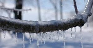 Under A Blizzard Or Ice Storm Warning? What You Need To Do Prepare - Do you have a plan for dealing with a blizzard or ice storm. Of course, I mean the things that follow, particularly the cold!