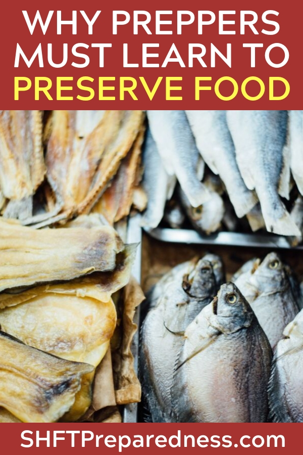 5 Reasons Why You Should Learn to Preserve Food NOW - Many people are intimidated and overwhelmed by the idea of canning or dehydrating food. Some are simply too lazy to put in any effort. Homestead Dreamer lists out the top reasons why you should start learning how to preserve your food now so that in the event of a large-scale disaster, you won't be left in the cold and hungry.