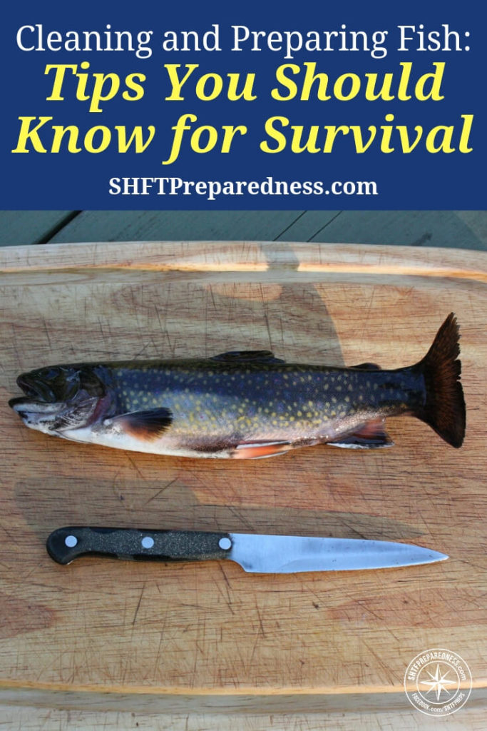 Fish are the most underrated survival protein in the game. It's true. There are debates on forums about snaring or hunting protein, deadfall traps and many other things about chasings squirrels, deer, and other small game.