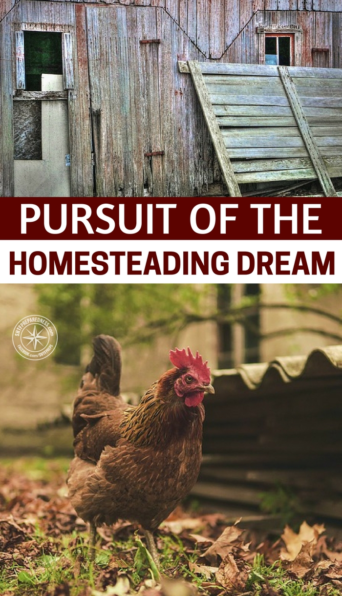Pursuit of the Homesteading Dream - If you're looking for land to farm, start paying attention to vacant land near you. Most county registrar of deeds have land maps you can access for free that show you who the owners are. So as you're driving your usual routes, start to take notes of vacant lots and land. Right down the addresses, then once you get a handful, start looking the up online, beginning with your local registrar's office.