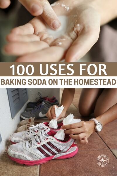 100 Uses for Baking Soda On The Homestead - This is a great article about the 100 uses for baking soda. The homestead and the home can use many of these. One of the very best uses is that you can clean using baking soda and there are no other harsh chemicals inside that will make you or your family sick. That is always a concern these days.