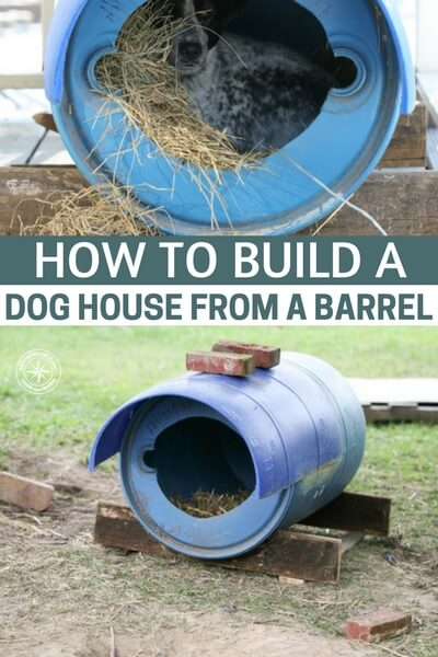 How to Build a Dog House From a Barrel - When you look at this article you see a serious project for your dog. These are the coolest barrel dog houses I have seen. The author even throws some hay into the barrel for the dog to nestle up in. Dogs are pack animals and they are den animals. There is nothing that says happiness like a passed out dog in pile of his buddies.