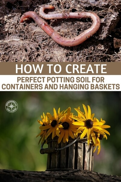How To Create Perfect Potting Soil For Containers and Hanging Baskets - This article is about taking that to the very next level. Growing in pots is another great method for growing high quality vegetables. Of course, growing foods in pots is tough when it comes to watering and keeping the plants alive through hot days. Your soil can make that easier on you.