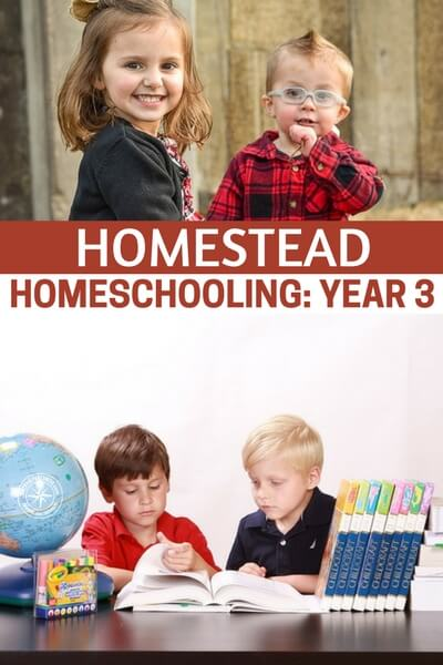 Homestead Homeschooling: Year 3 - This is an article about homeschooling. Its an article about the idea of teaching your kid yourself. Its the idea that you can get it done better than a single teacher who is up against 30 kids and is overwhelmed. There are many parents, all over the nation, who are considering the same thing. Public school needs an overhaul and you may not want your kid to be a part of that overhaul.