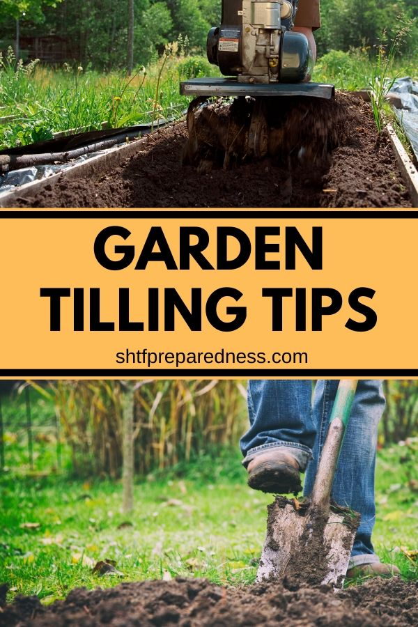 New gardener? Not sure if tilling your garden is good or bad? Check out these garden tilling tips and you'll know when it is and when it isn't appropriate to till your garden. #gardening #tuilling #gardendigging #homesteading #organicgarden #gardeningtips