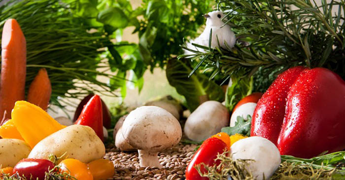 How Deep Do You Till Your Vegetable Garden - Starting a home garden is a sure way to improve your food security without spending too much money. However, you must get it right in order to enjoy good yields. Of the many questions, a new gardener can ask is how deep do you till your vegetable garden?