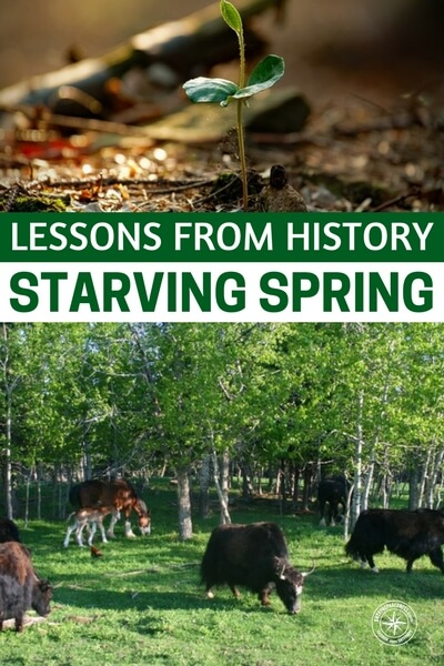 Lessons from History – Starving Spring - You would think that making it through the harsh winter would be tough enough but imagine that the days are warming but you are completely out of food stores. Everything you packed away has been eaten and the starving spring is upon you. Things were just so real back then. If we witness a collapse in our time, we will all become well acquainted with the starving spring.