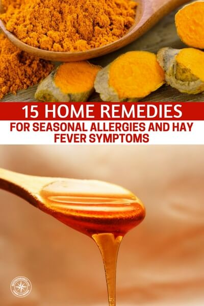 15 Home Remedies for Seasonal Allergies and Hay Fever Symptoms - This article is a breakdown of 15 home remedies for seasonal allergies. If you are looking for a more naturalroute to take, when dealing with allergies, you should consider this article and the home remedies therein.