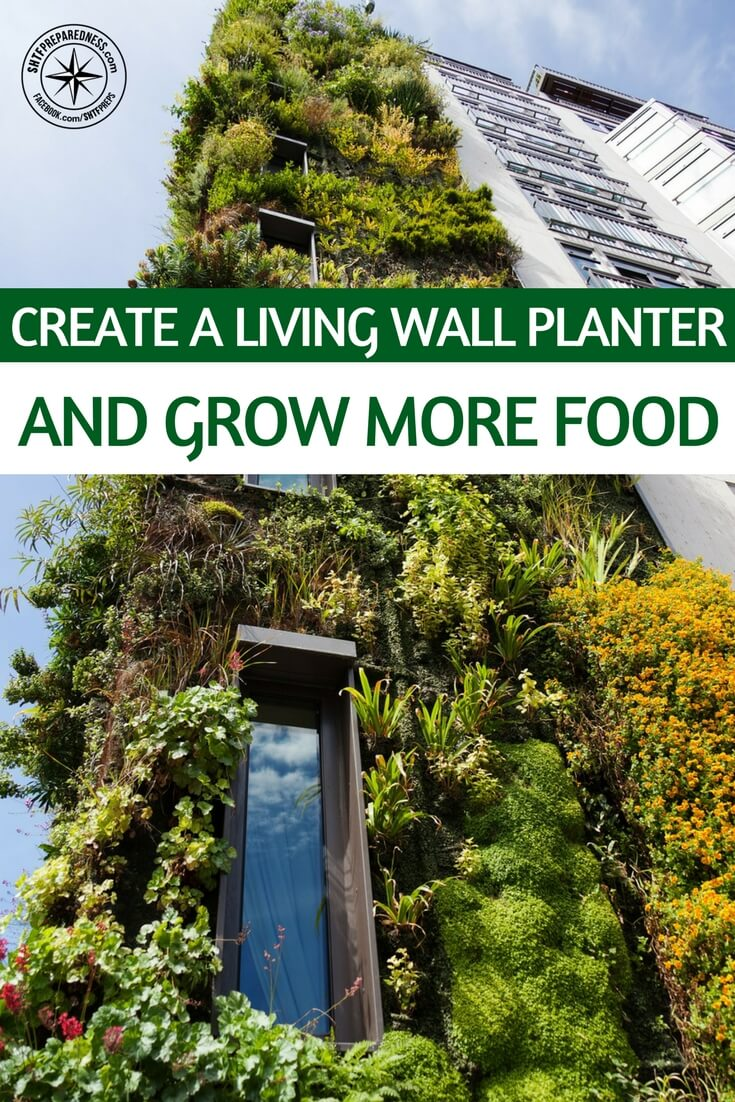 Create a Living Wall Planter and Grow More Food -- Perhaps you seen the vertical wall planters that come in pouches, pockets and towers...? As the price of food sores, gardening and growing food wherever you can has become more than a hobby. For many it's also a necessity for supplementing income. But not everybody has the space for a full on garden.