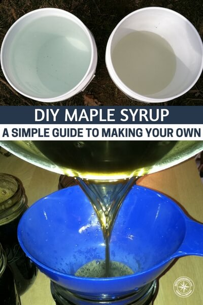diy maple syrup a simple guide to making your own rh shtfpreparedness com simple guide to meditation Maple Color