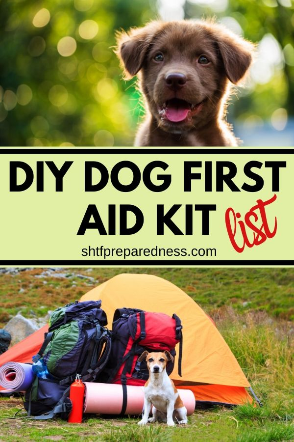 If you take your dog camping or hiking, you'll want to create a DIY dog first aid kit, just in case. #camping #campingwithpets #petemergencykit #pets #firstiadkit #diyfirstaidforpets #shtf #preparedness #survival