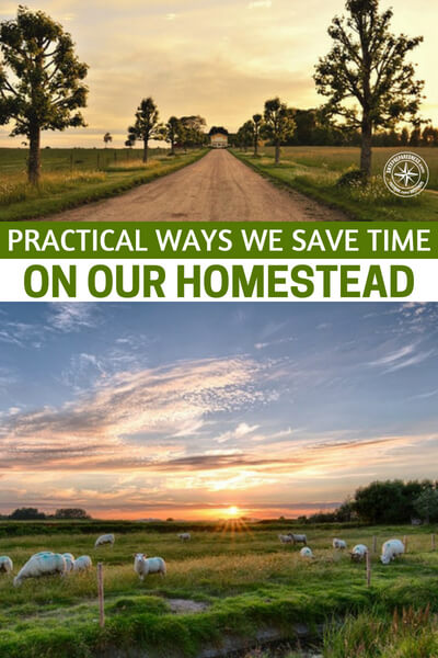 Practical Ways We Save Time On Our Homestead - I have read stories about old couples retiring to a homestead and barely surviving it. Of course, that workload probably gave them another 15 years on their life and they should be grateful for that but, its still a very real struggle.  This is a great article that could get you more efficient, fast.