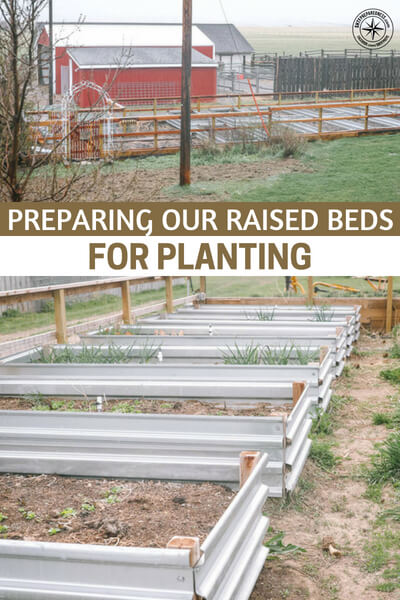 Preparing Our Raised Beds for Planting - This article is a look at how these people prepare their raised beds for planting. You will see that they have a number of methods for creating the right growing medium. Again, this method gives you total control so you can tailor beds to certain plants and really find the best mix for them.