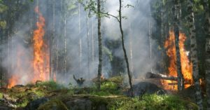 8 Tips for (Responsibly) Camping in Fire Season - This article is all about camping during fire season. Its about the fire season and how fires can spark at a moments notice if we are not responsible.