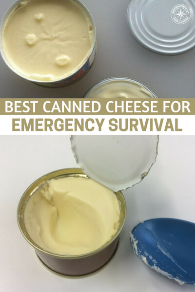 Best Canned Cheese For Emergency Survival - This article offers another option in terms of cheese. While keeping dairy goats or cows would obviously be your best choice, its not your only one. Some people in suburban or urban situations will not have the option of keeping dairy cows.