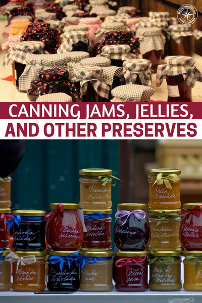 Canning Jams, Jellies, and Other Preserves (And 100+ Recipes to Get You Started!) - What are you going to do this year to maximize that harvest? Well, you have to be prepared to can and preserve.