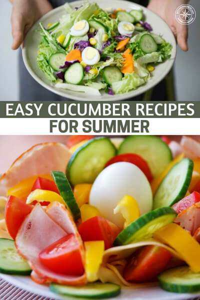 Easy Cucumber Recipes For Summer - I found recipes for eating the cucumbers right out of the garden: have you ever tried one warm from the sun, cut in quarters and sprinkled with salt? YUM! Soo good! Crunchy, fresh, and healthy.