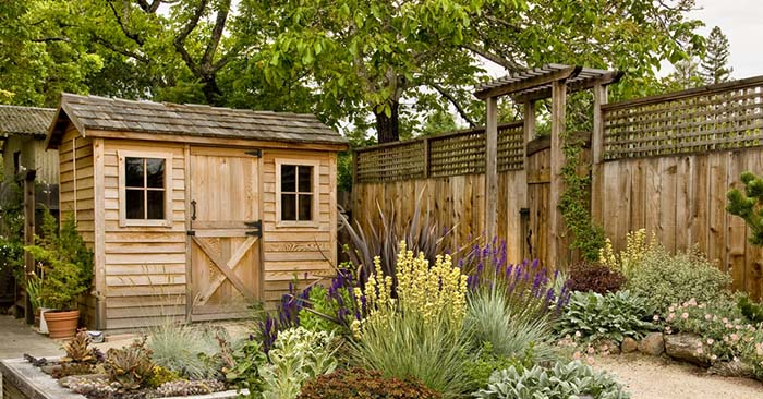 7 Reasons You Need to Start a Home Garden Today - This article is yet another piece on the many reasons that you should start a home garden. You have to be prepared to take this on.
