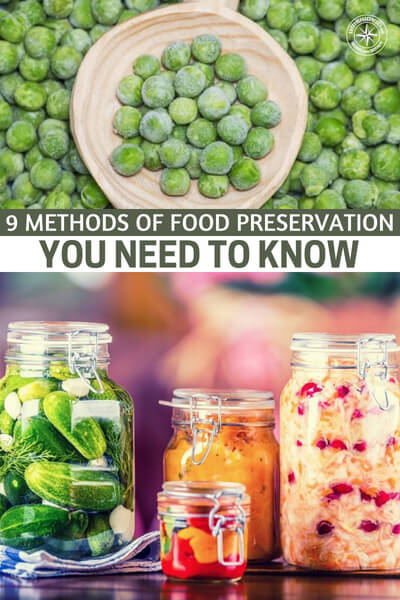 9 Methods of Food Preservation You Need to Know - This is a great little article about 9 methods for food preservation. These are all very important and you must take the time to get to know them. Don't lean on preservations you have never tried in times of crises.