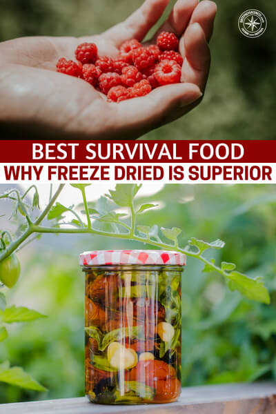 Best Survival Food – Why Freeze Dried is Superior - When it comes to survival food most people will tip their hats to freeze dried foods. Why is that? What is survival food superior? Well, this article is all about that question, what sets them apart? If you are interested in that idea you can do a number of things to determine what you are looking to do.