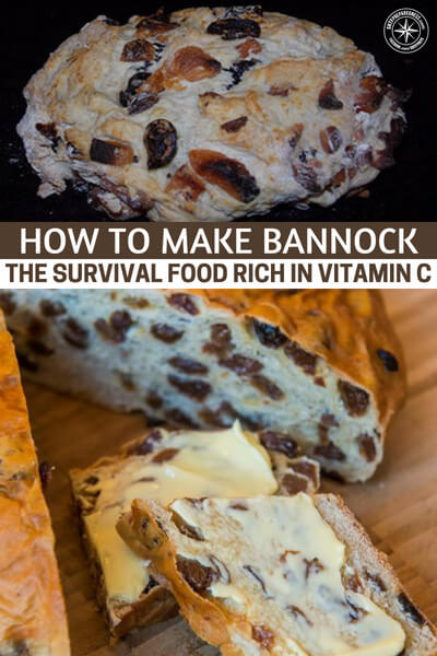 How to Make Bannock the Survival Food Rich in Vitamin C - This is an article about the survival food and nearly ancient bread called bannock. This is a food that is very simple to make and can last for a very long time. With the introduction of a few ingredients you can also make this long shelf life food work for things like Vitamin C.