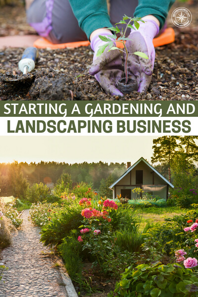 Starting a Gardening and Landscaping Business - Once you get into the flow of thinking about business, you'll begin to see opportunities everywhere. The most successful entrepreneurs are those who are always open to seeing opportunity and then act on what's relevant.