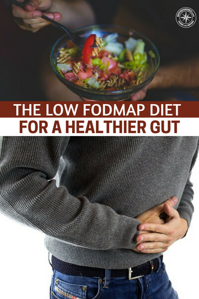 The Low FODMAP Diet for a Healthier Gut - This is a very interesting article that explores another type of diet. You are going to see some things you agree with and maybe some that you don't. The thing about diets is that you need to try lots of diets until find the one that works with your body and your fitness level.