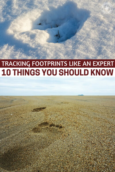 Tracking Footprints Like An Expert – 10 Things You Should Know - This is a great skill that can help you out in many ways. You know, tracking is not just about being able to find a bad guy or a deer. What happens if you lose a child in the woods? After a collapse there will be no service to help find your child. It will be up to you.