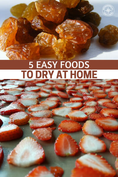 5 Easy Foods to Dry at Home - This is a great article about 5 easy foods to dry at home. Some foods dry easier than others and if you make things easy, you will do them more often. That is just part of the reality. Its very important for you to understand that your prepping processes must not be a massive hindrance.