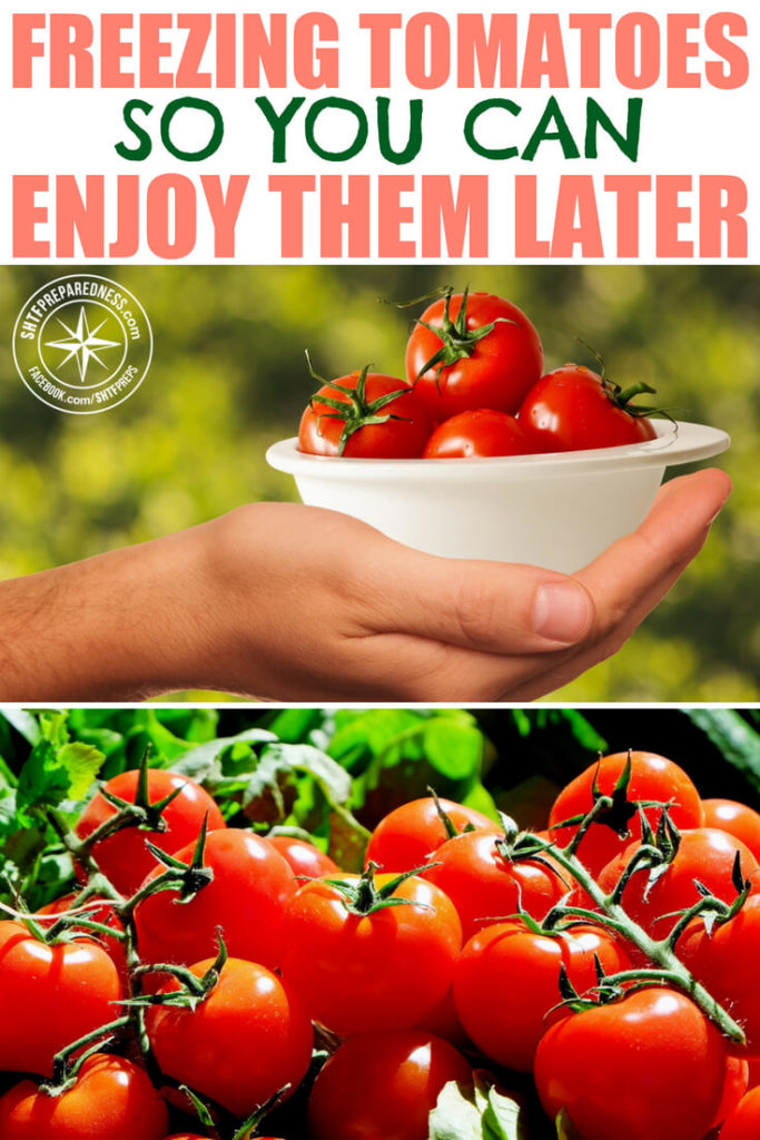 Freezing Tomatoes So You Can Enjoy Them Later -- It's tomato season and if you planted tomatoes you have lots of them ripening every day. Maybe you have too many to eat now, so you're looking for ways to save them for later use. I personally prefer freezing tomatoes, because it's so easy!