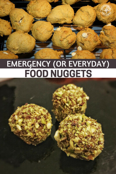 Emergency (or Everyday) Food Nuggets - This is a great article with one of the most comprehensive directories for survival foods of this kind. These are rare little snacks to begin with but these ones offer a great mix of quality and quantity with densely nutritious foods.