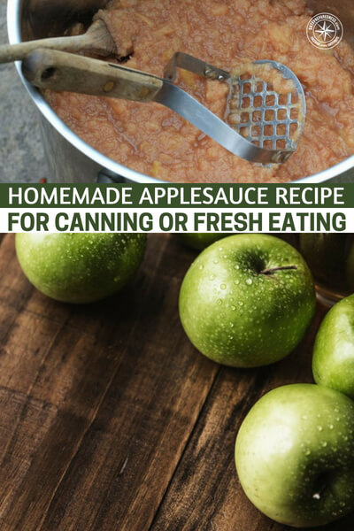 Homemade Applesauce Recipe for Canning or Fresh Eating - This article offers a great little breakdown on the practice of making applesauce and how effective a preserved food it can be. This article also focuses on making a delicious applesauce that will taste great right after you make it.