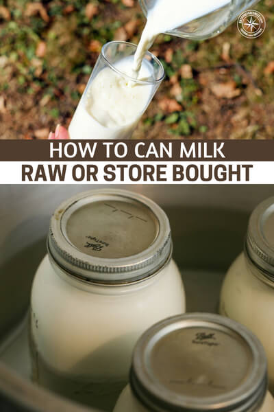 How to Can Milk – Raw or Store Bought - This is a great article that levels up milk because it gives us an opportunity to increase the shelf life of your milk among other things. Did you know that you can store raw milk using the canning process. You are going to find that there are a number of options when it comes to storing milk.
