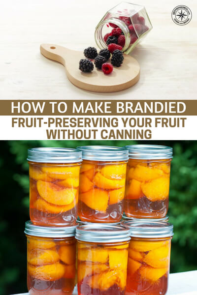 How To Make Brandied Fruit-Preserving Your Fruit Without Canning - This article is about an alcohol preservation method that will allow you to make brandied fruit and preserve without canning. Having the ability to turn those fruits into something that can sit around for months, or longer, is going to give you the option to store plenty food with the right vitamins to keep you healthy.