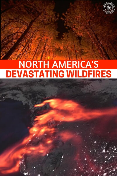 North America's Devastating Wildfires, Viewed From Space - This article is an amazing look at the devastating wildfires of the West Coast. Its a terrifying picture to look at when you realize that there are a number of ways these wildfires can affect you. Lets use this opportunity to prepare for wildfires in our own right. Dry, hot days could be in our future.