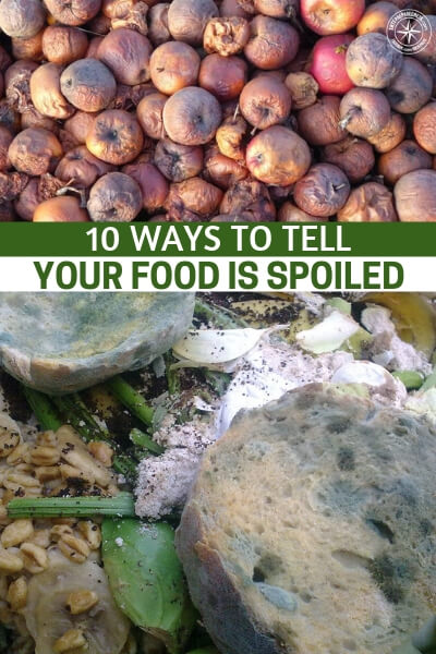 10 Ways to Tell Your Food is Spoiled - This is a great little guide about just that subject. It offers up 10 ways to tell if your food is spoiled. Things like botulism can affect spoiled canned food and that can be downright deadly in modern times. Just imagine how you might fare in a SHTF scenario.