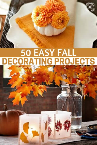 50 Easy Fall Decorating Projects - Fall is upon us and now is the time to consider fall decorating and fall menus among other things. Its a time to break up the monotony with some fun. This is an article about 50 easy fall decorating projects. You will love this list of DIY projects that you and your family can participate in.