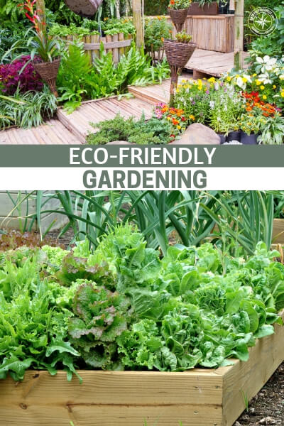 Eco-Friendly Gardening - All gardens, no matter how big or small are indeed beneficial to our planet! Gardens encourage wildlife, purifies the air, minimizes heatwaves, creates a pleasant atmosphere and much more.
