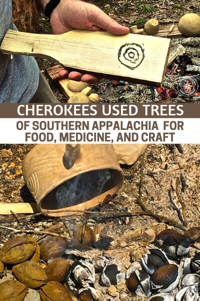 How Cherokees Used Trees of Southern Appalachia for Food, Medicine, and Craft - This is a great article about the Cherokee in particulare and how they used the trees of southern Appalachia for food, medicine and craft. Trees are a four seasons resource that can be incredibly helpful if you know which ones are best and what to do with them.