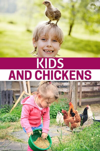 Kids and Chickens - This is a great article that goes deep in depth on the idea of chickens and kids and how they go hand in hand. Its an incredible look at what this relationship can be and what you have to look out for as well.