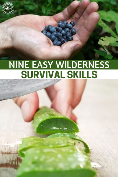 """Nine Easy Wilderness Survival Skills - Its an article about 9 easy wilderness survival skills. You are going to see how effective these skills are but do not take them for granted. While they may look """"easy"""" everything changes under pressure. So we must be aware of that."""