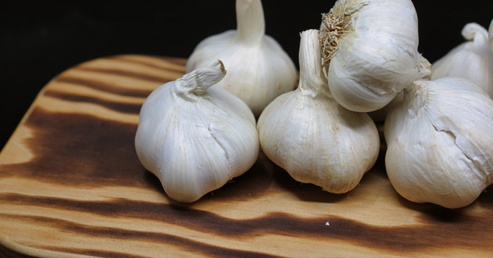 When and How to Grow Garlic - This article is all about when and how to grow garlic in your own garden. Supermarket garden comes down to sourcing. Where is that supermarket garlic coming from. Some of it comes from China.