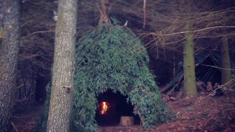 How to Build A Wickiup