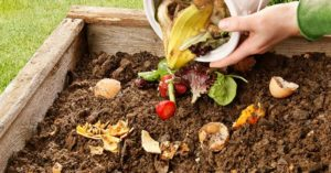 Awesome. That's the word to describe compost. And if you're not using compost, you're missing out.