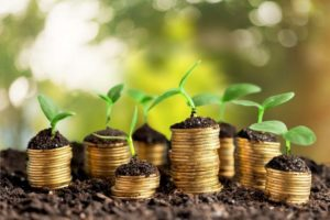 Coins and young plants - a concept of self sufficient living
