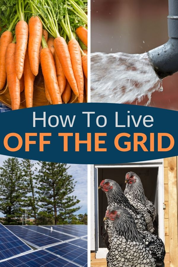 Want to learn how to live off the grid? Here are the basics for off the grid living: food, electricity, first aid, and more. Take a look. #offthegrid #livingoffthegrid #sustainability #survival #preparedness #shtf